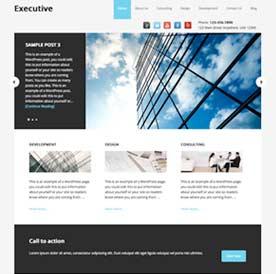 executive-th