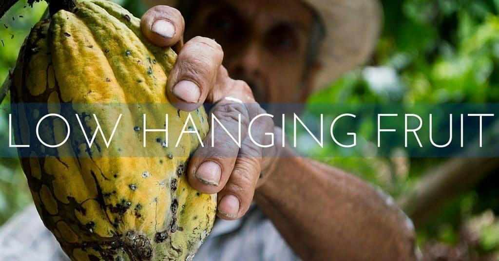 low hanging Internet marketing fruit